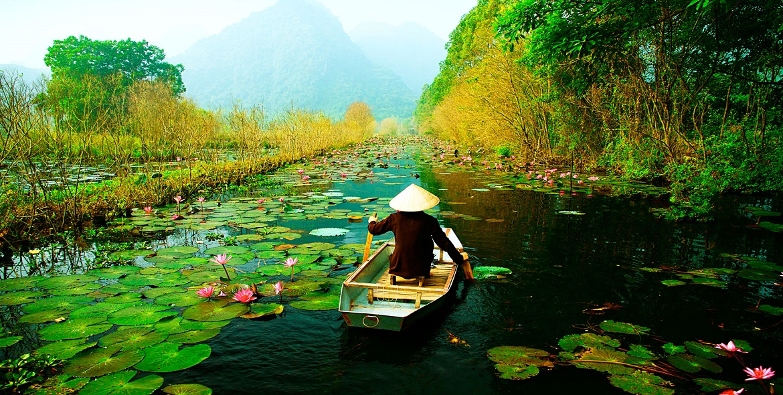 Divine Vietnam