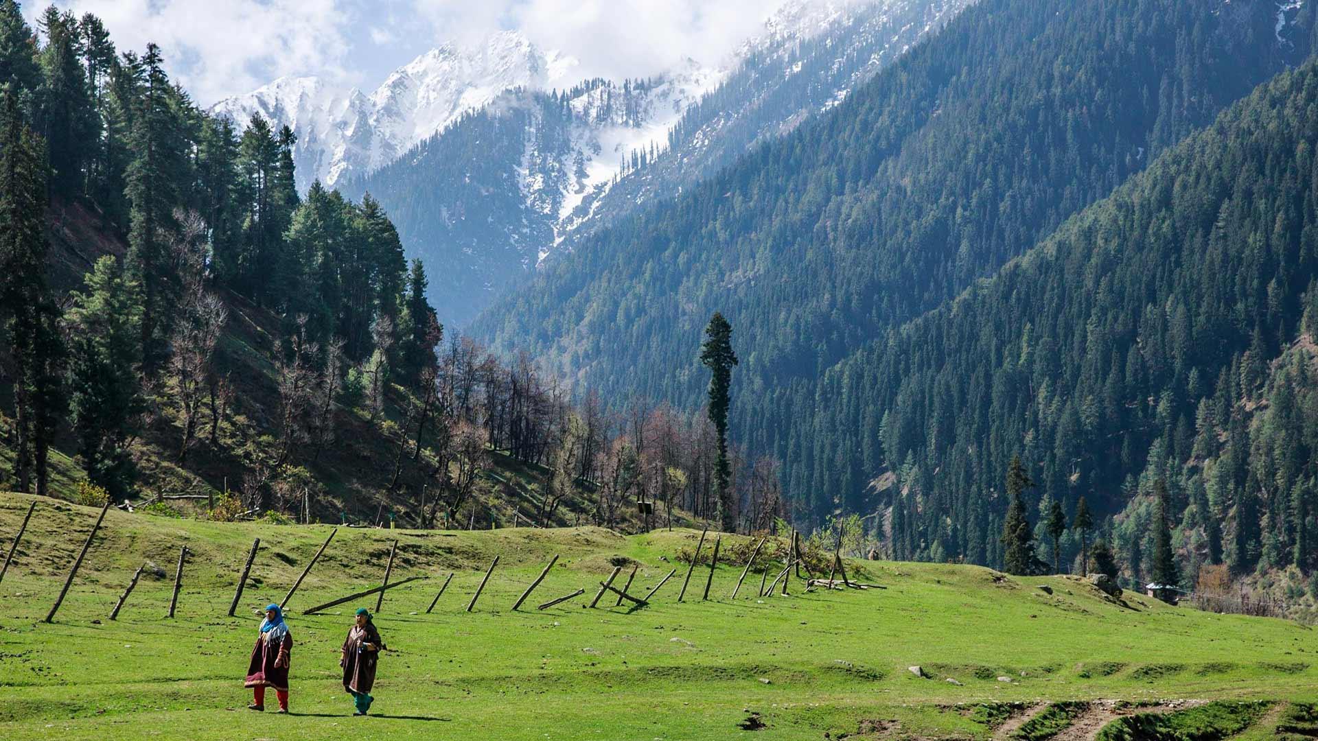 Splendid Kashmir